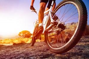 mountainbike-erleben-action