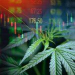 Beste Cannabis Aktien 2020 – Empfehlungen